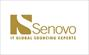 Jobs at Senovo IT in Bern